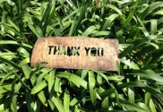 A thank you shows gratitude in the simplest way
